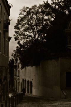 photography retro summer