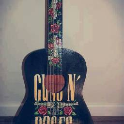 guns and roses gunner rock music love gitar